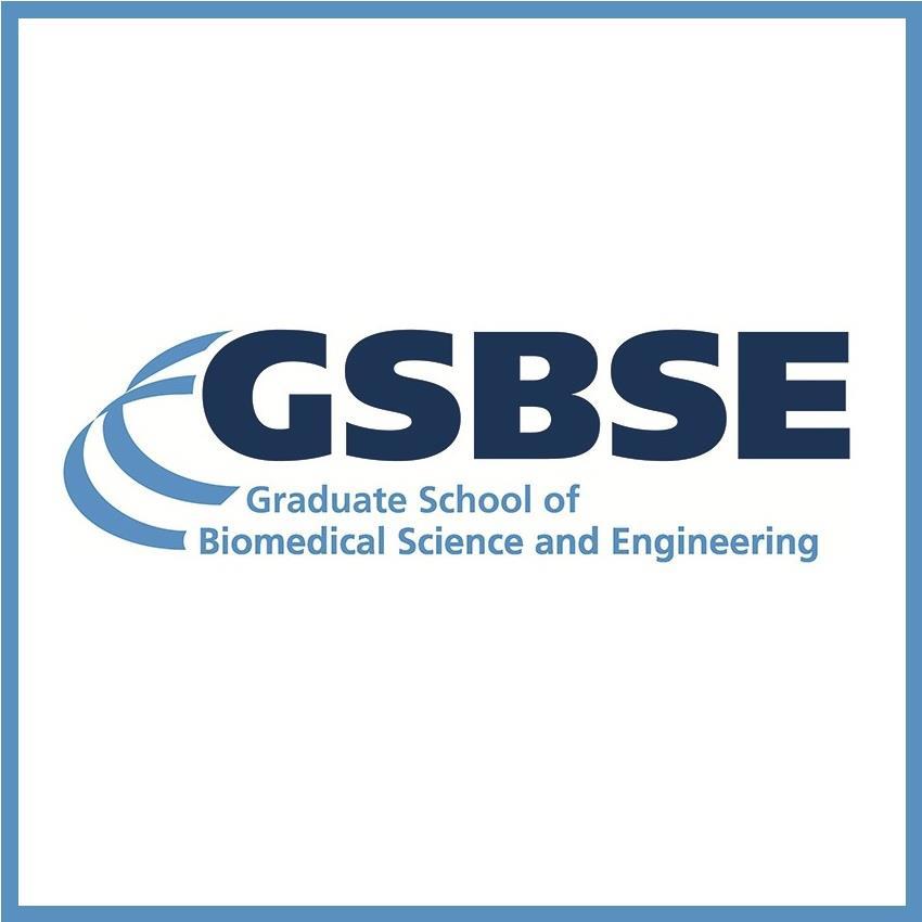 GSBSE logo.